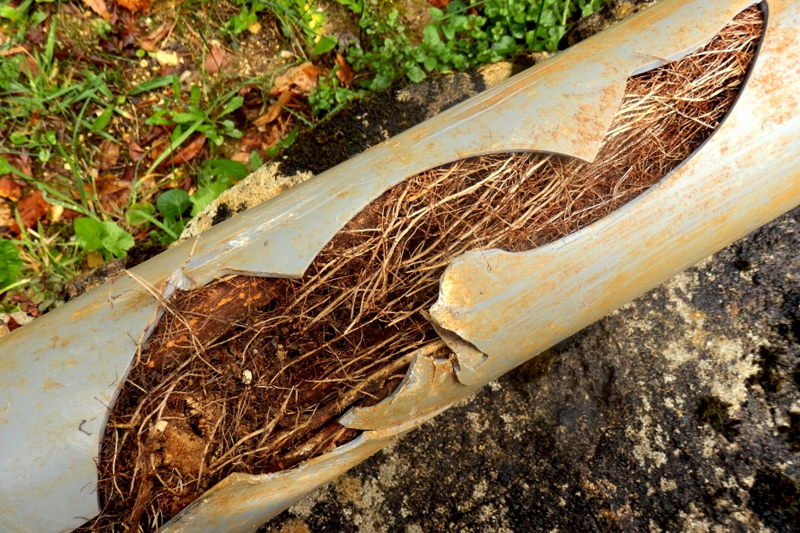 roots pipe