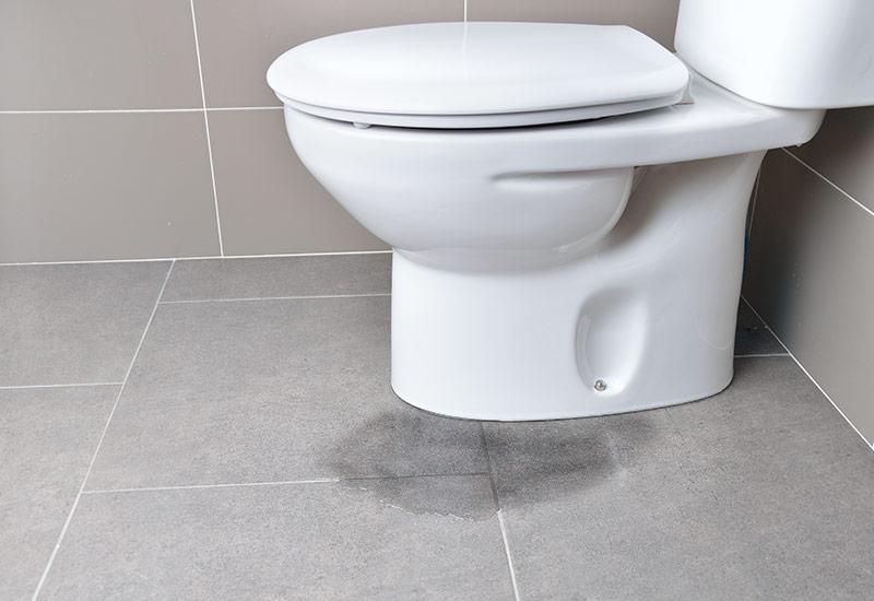 toilet-image copy