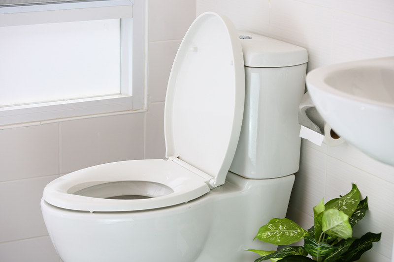 a duel flush toilet